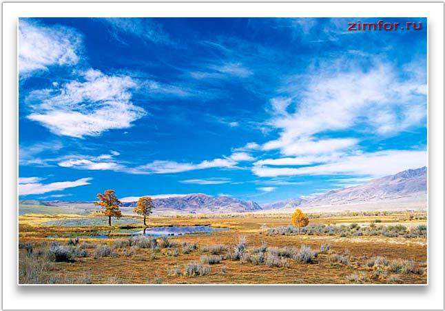 Высокогорное плато Укок. Чуйская долина. Горный Алтай