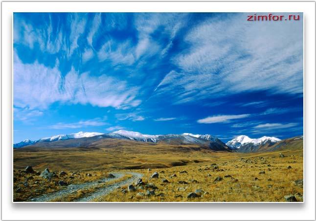 Высокогорное плато Укок. Республика Алтай