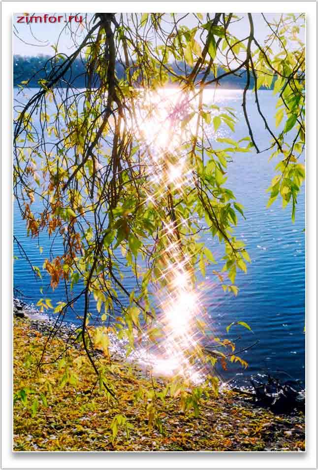 Фотосъёмка в контровом свете. ISO 100