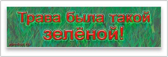 Надпись - Трава была такой зелёной!