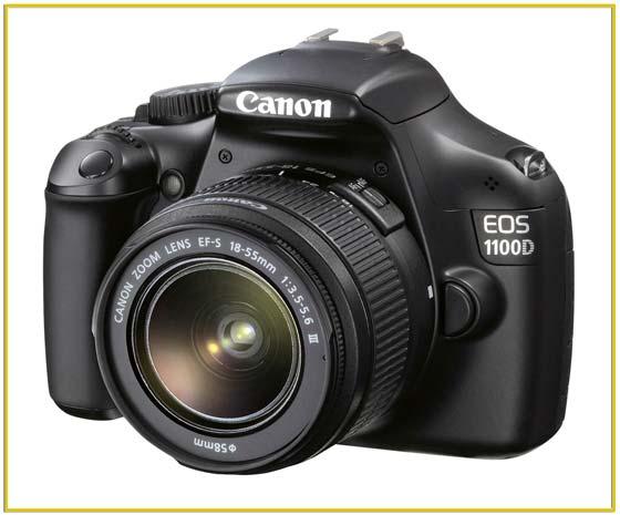 Canon или Nikon? Видео о выборе зеркального фотоаппарата: Canon или Nikon
